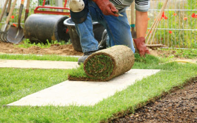 How to Hire the Best Landscape Contractor for Your Project